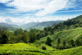 Vakantie Maleisië