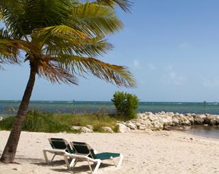 Indian Restaurants Sunny Isles Beach Miami